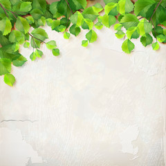 Vector tree branch leaves plaster wall background