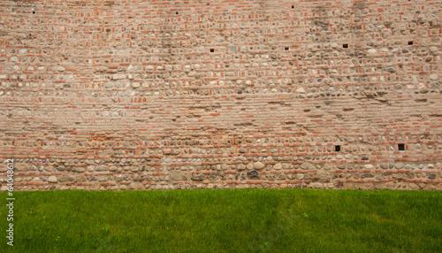 muro con erba