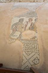 Mosaïques de gladiateurs - site archéologique de Paphos