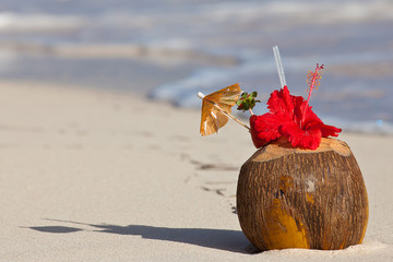 coconut by the shore