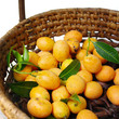 Exotic Thai Fruit, Marian plum