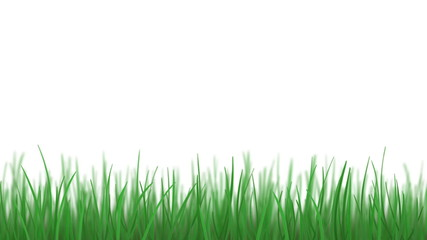 Grass and blue sky, loopable