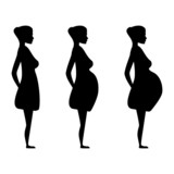 pregnant women in the three trimesters. poster