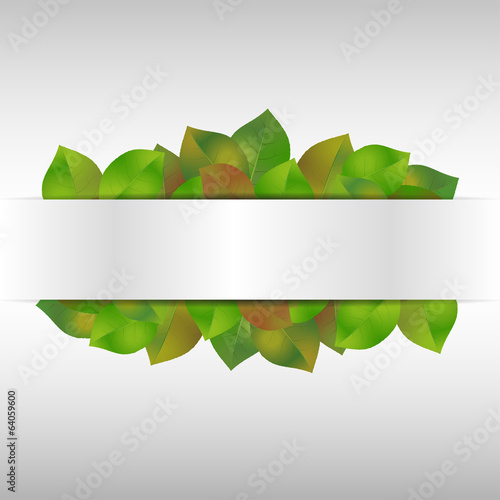 Leaf background