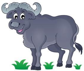 African bull image 1