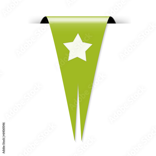 The flag with star icon