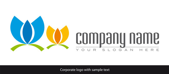 company two lotus
