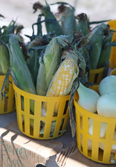 baskets of corn