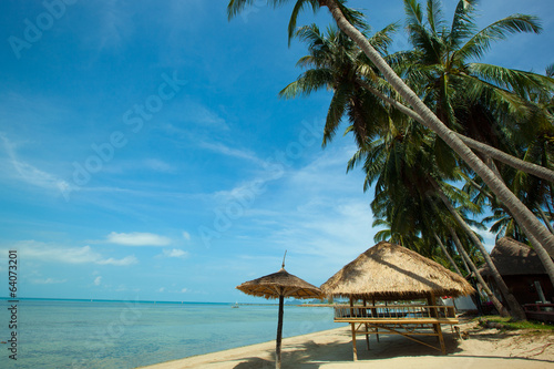 beach and coconut tree in Koh Phangan Thailand