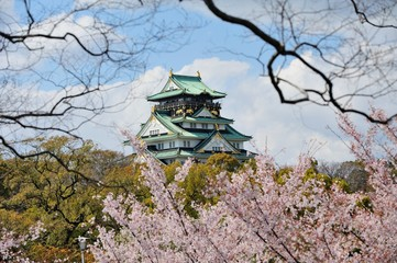 osaka castle with the cherry blossoms