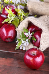 apples in a linen bag with apple flower on wooden table