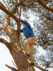 young boy climbing in a tree