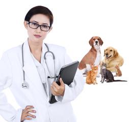 Asian vet holding tablet