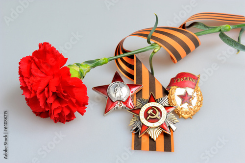 Single red carnation, Saint George ribbon and military orders