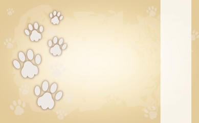 Dog paws on light brown background