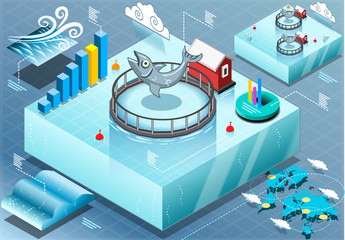 Isometric Infographic of Sea Farmed Fish