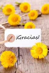 Yellow Flowers with Gracias