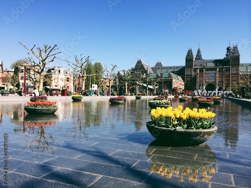tulips reflection in amsterdam