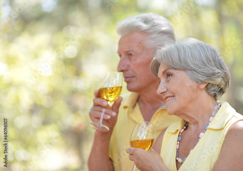 Senior couple drinking wine