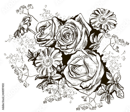 Sketch of roses and Chamomile