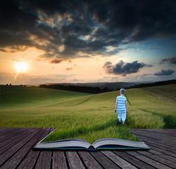 Book concept Concept landscape young boy walking through field a