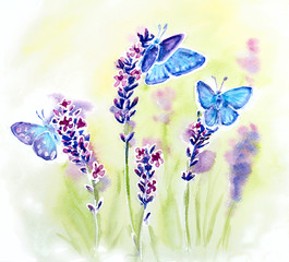 Painted watercolor with summer lavender flowers and butterflies