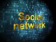 Social network concept: Social Network on digital background