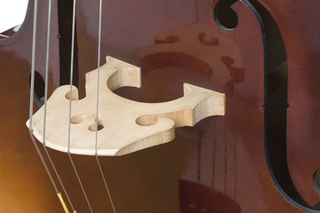Detail of Double Bass