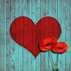 flower poppies heart and turquoise wood background