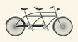Vintage Illustration of tandem bicycle over white background - 64113480