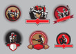 Set of boxing icons or emblems - 64115232