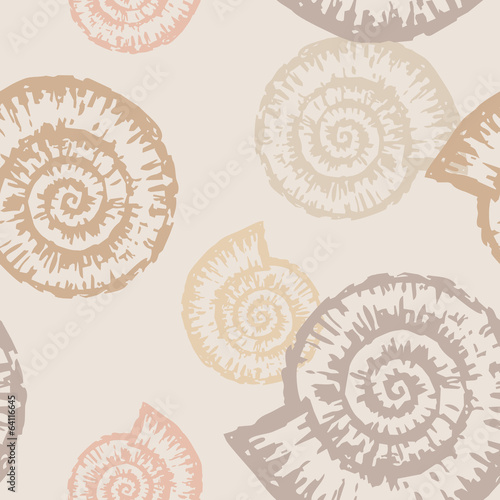 pattern of nautilus