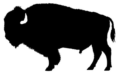 American bison silhouette