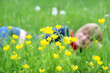 Frau relaxt im Gras