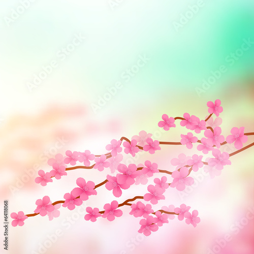 Cherry Blossom Tree Branch
