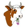 canvas print picture - Glückliche Kuh