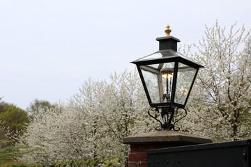 Himmel, Laterne und Frühling