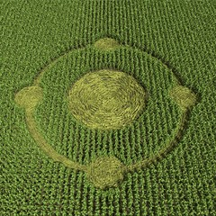 3d illustration of a crop circle