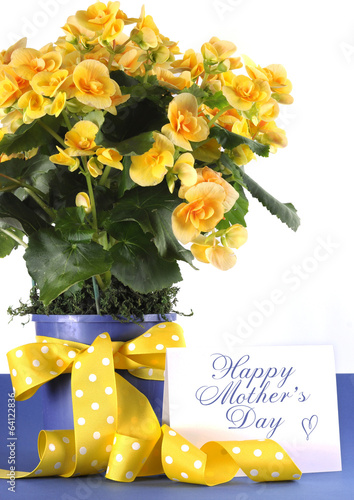 Happy Mothers Day yellow Begonia flowers gift
