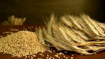 Rotating Barley In Studio
