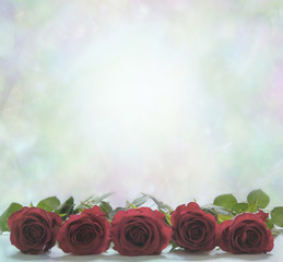 Red Roses Poster Background