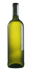 Isolated bottle of white wine on white background