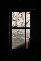 dusty window frame