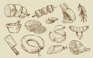 vector hand drawn Meat