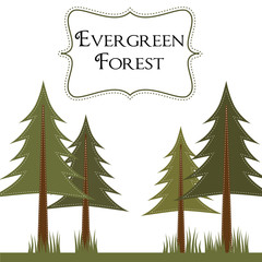 Forest template with pine trees