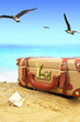 Closed suitcase on tropical beach with birds