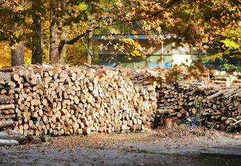 GOMEL - OCTOBER 2013: lunch break at the working woodworking ent