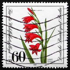 Postage stamp Germany 1981 Marsh Gladiolus, Plant