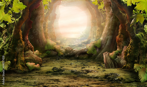 romantic forest view - 64157458