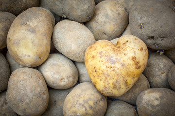Heart Shaped Potato background